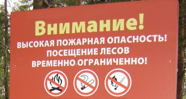 В Крыму продлят запрет на посещение лесов