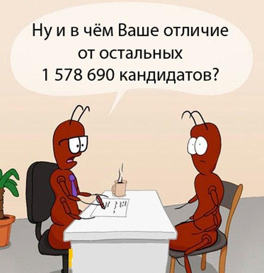 Официальных кандидатов на пост главы администрации Симферополя все еще нет