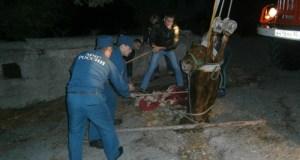 В Ялте лошадь провалилась в канализационный люк. Вытащили спасатели