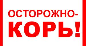 Зафиксированы семь случаев заболевания корью в Симферополе и Евпатории