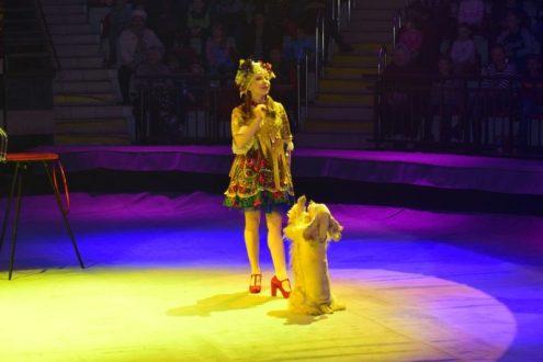 Ёлка в симферопольском цирке
