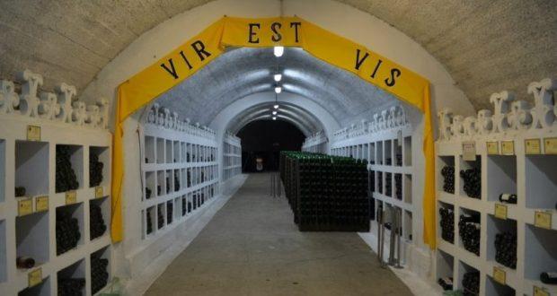 По оценкам властей Республики, будущий инвестор должен вложить в модернизацию производства не менее 700 млн. рублей, что позволит увеличить объем выпуска до 3 млн. бутылок в год. Сейчас мощность производства составляет 1 млн. бутылок шампанских и 600 тыс. бутылок игристых вин в год.