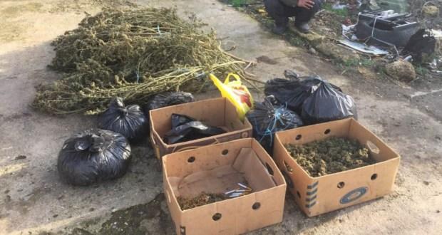 В Сакском районе полицейские пресекли деятельность наркосбытчика