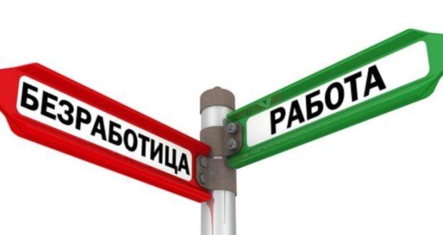 Число безработных в Севастополе за год уменьшилось. Департамент соцзащиты города подводит итоги 2017-го
