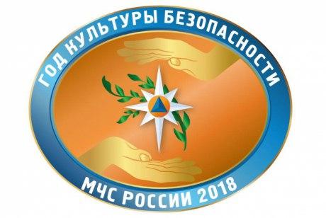 2018 год в МЧС РФ объявлен Годом культуры безопасности