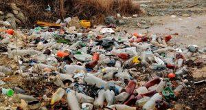 Садоводы села Лозовое Симферопольского района заплатят внушительный штраф за мусор