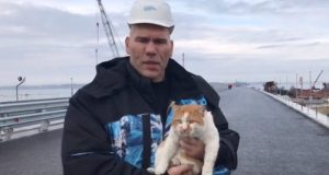 Николай Валуев проехался по Крымскому мосту в компании… кота