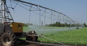 Оросительные системы в Крыму готовят к началу поливного сезона