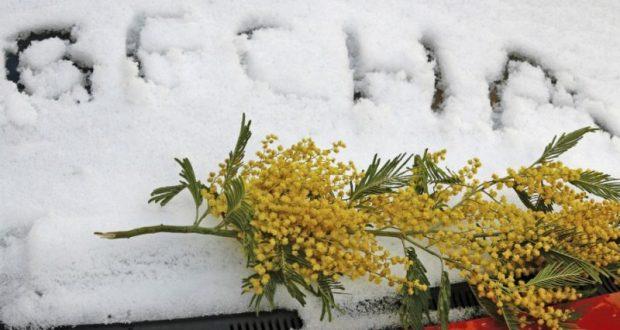 С 8 Марта в Крыму - весна!
