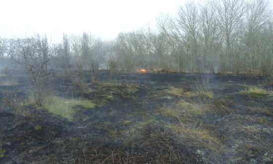 В Крыму сухая трава горит всё чаще