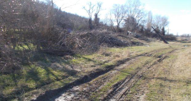 Экологи обнаружили в Бахчисарайском районе несанкционированную свалку