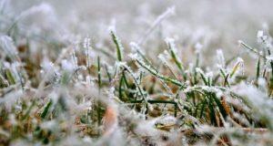 В Крыму в воскресенье похолодает. Возможны заморозки