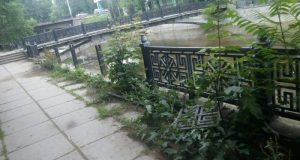 Полтора миллиарда рублей – цена реконструкции улиц и скверов Симферополя в этом году