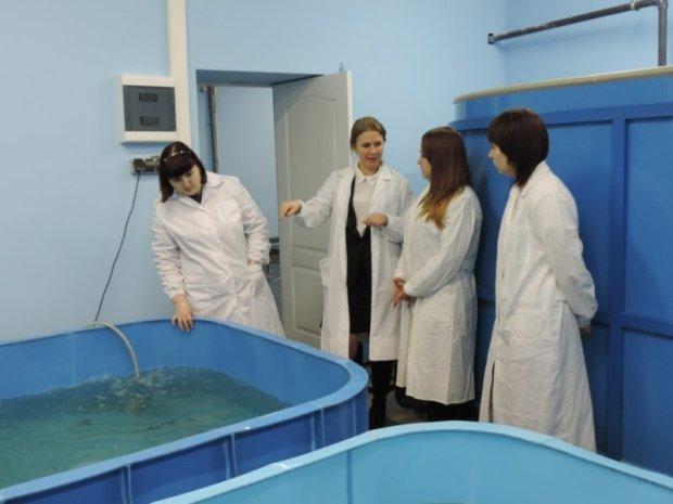 """В Севастополе будут """"мониторить"""" состояние биоресурсов в Чёрном море"""