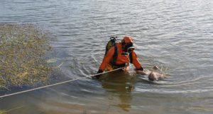 В Красногвардейском районе мужчина убил приятеля, привязал к бетонному столбу и сбросил в реку