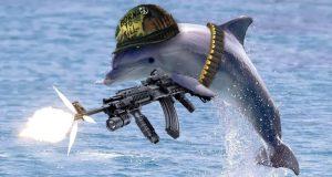 «Отжиг» дня. Украинский чиновник Бабин поведал о дельфинах-«патриотах», не изменивших присяге