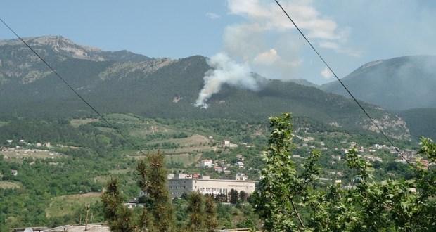 На Южном берегу Крыма горит лес