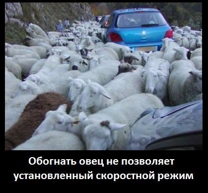 Депутат Госдумы шокирован «инициативами» властей Севастополь