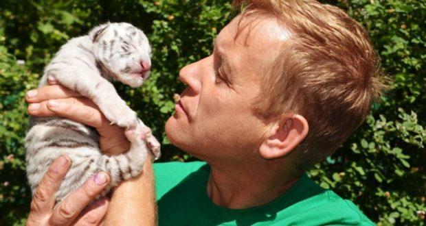 В сафари-парке «Тайган» родилась редкая бенгальская тигрица