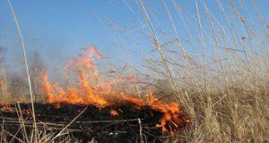 В Крыму – высокая пожарная опасность. Горит сухая трава