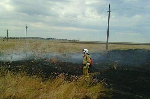 В Крыму – пятый класс пожарной опасности. Ежедневно – 40 возгораний сухой растительности