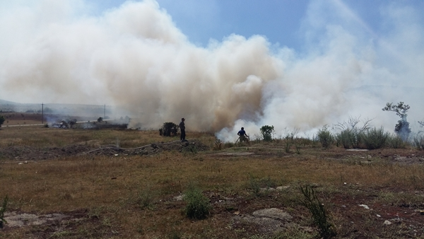 В Крыму ежедневно происходит около 40 загораний сухой растительности