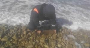 На берегу моря в Ленинском районе Крыма обнаружили бомбу времен Великой Отечественной войны