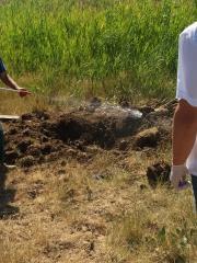 Житель Крыма заплатит штраф в 7 тысяч рублей за незаконное захоронение коровы