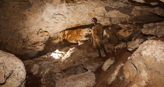 В крымской пещере нашли кости древней саблезубой кошки. Все артефакты направят в Екатеринбург