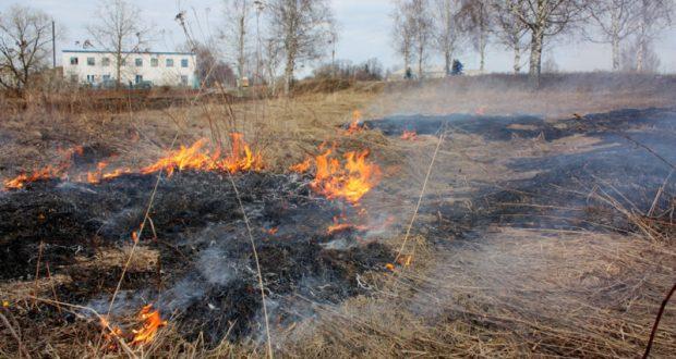 В Крыму - пожары. Горит сухая трава