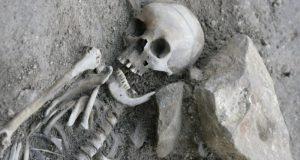 Во дворе симферопольской школы №21 обнаружили человеческие останки