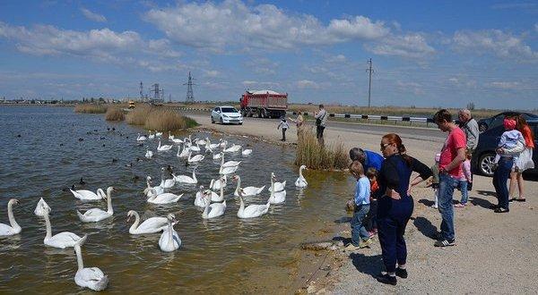 В Евпатории, рядом с озером Сасык, вводят особый режим патрулирования