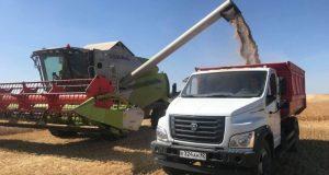 Из-за засухи крымские аграрии недополучили более 4 миллиардов рублей