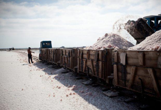На крымском озере Сасык-Сиваш начался сбор розовой соли