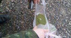 """Севастопольские таможенники задержали украинца с марихуаной """"на руках"""""""