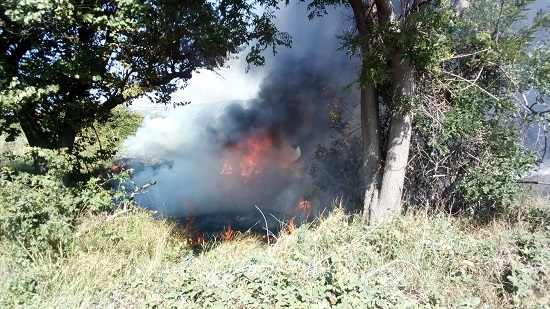 """На трассе """"Бахчисарай-Ялта"""" Daewoo Lanos вылетел с дороги и сгорел дотла"""