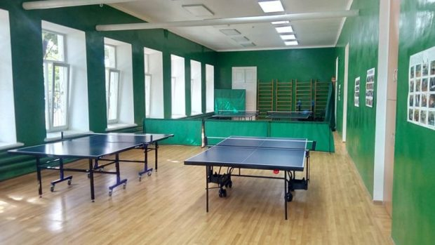 Эксперты ОНФ знают, что мешает развиваться спортивным школам в Крыму