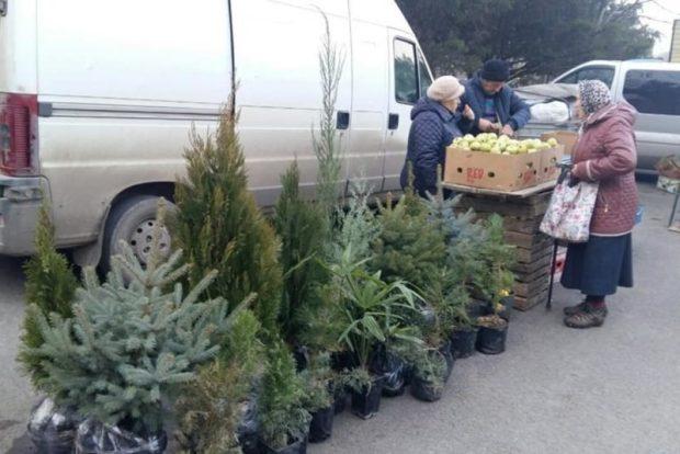 На ярмарке в Симферополе распродали 111 тонн овощей, фруктов, мяса и рыбы