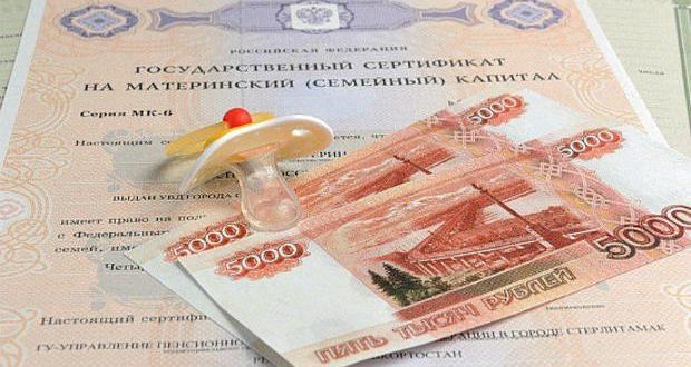 ПФР в Севастополе: ежемесячная денежная выплата из средств МСК — как получить?