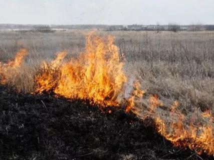 Вечерний пожар: в Бахчисарайском районе горела сухая трава