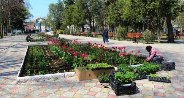 В Детском парке Симферополя высаживают цветники