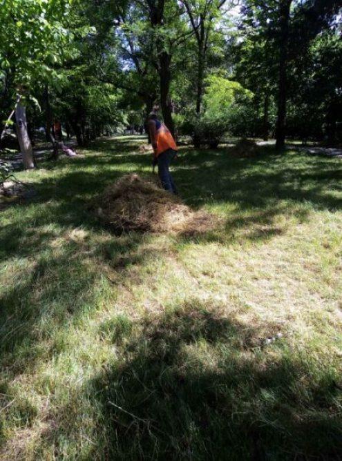 В Симферополе активно косят траву