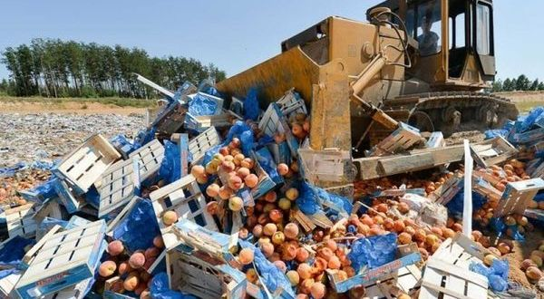 Роспотребнадзор предложил не уничтожать пригодные к еде продукты