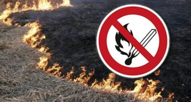 «Шашлыки» в Крыму - под запретом. Предупреждение о чрезвычайной пожарной опасности на 5 - 8 июня