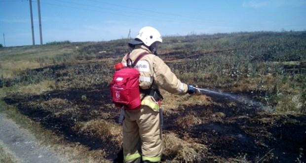 В Крыму едва не сгорело поле пшеницы
