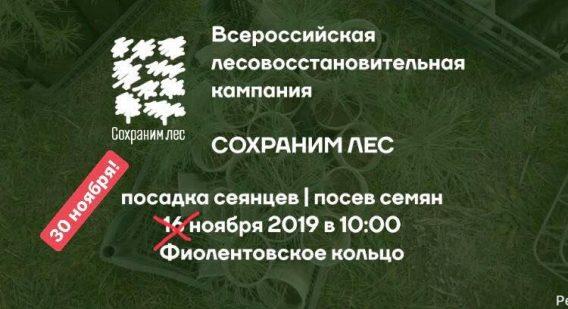 """Внимание! Акция """"Сохраним лес"""" в Севастополе с 16 ноября переносится на 30 ноября"""