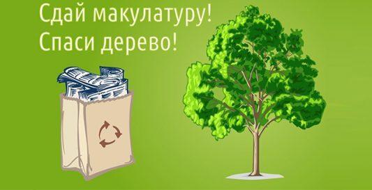 """В Крыму анонсируют эко-марафон """"Сдай макулатуру - спаси дерево!"""""""