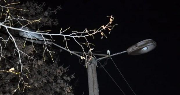 Фонарики не помешают: отключение уличного освещения на пр. Гагарина в Севастополе