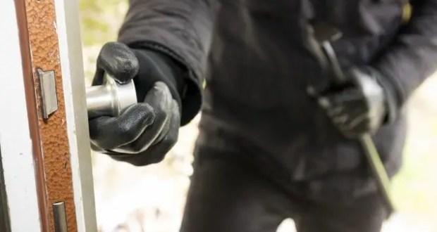 В Феодосии задержали подозреваемого в серии краж из садового общества