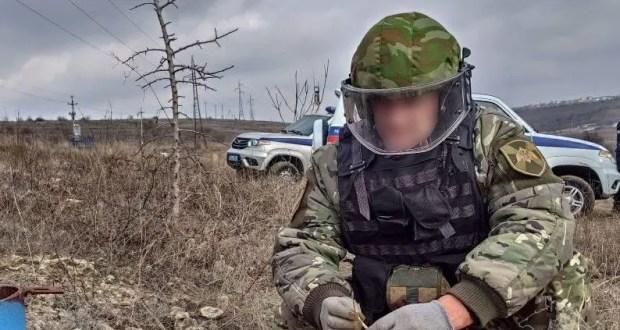Собирали грибы - нашли боеприпасы. Происшествие в Севастополе